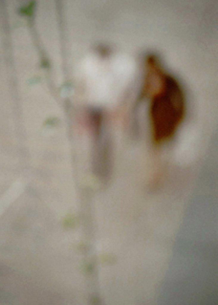 begegnungen-aus-der-vogelperspektive-2.jpg