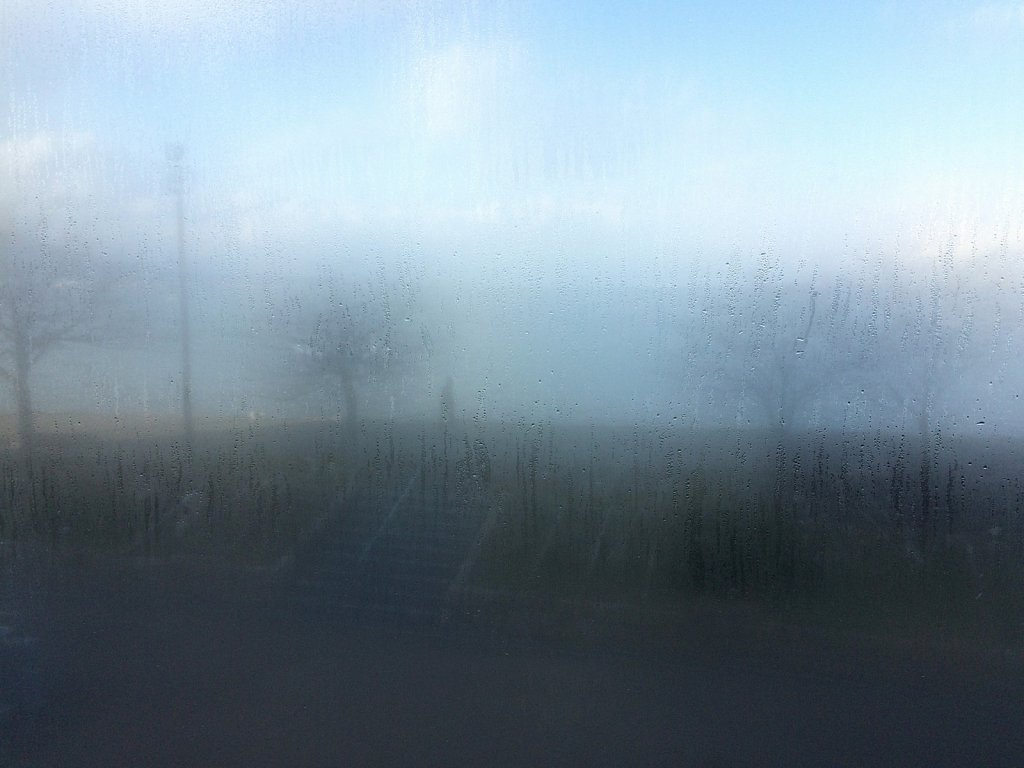 gehen-1-im-nebel.jpg